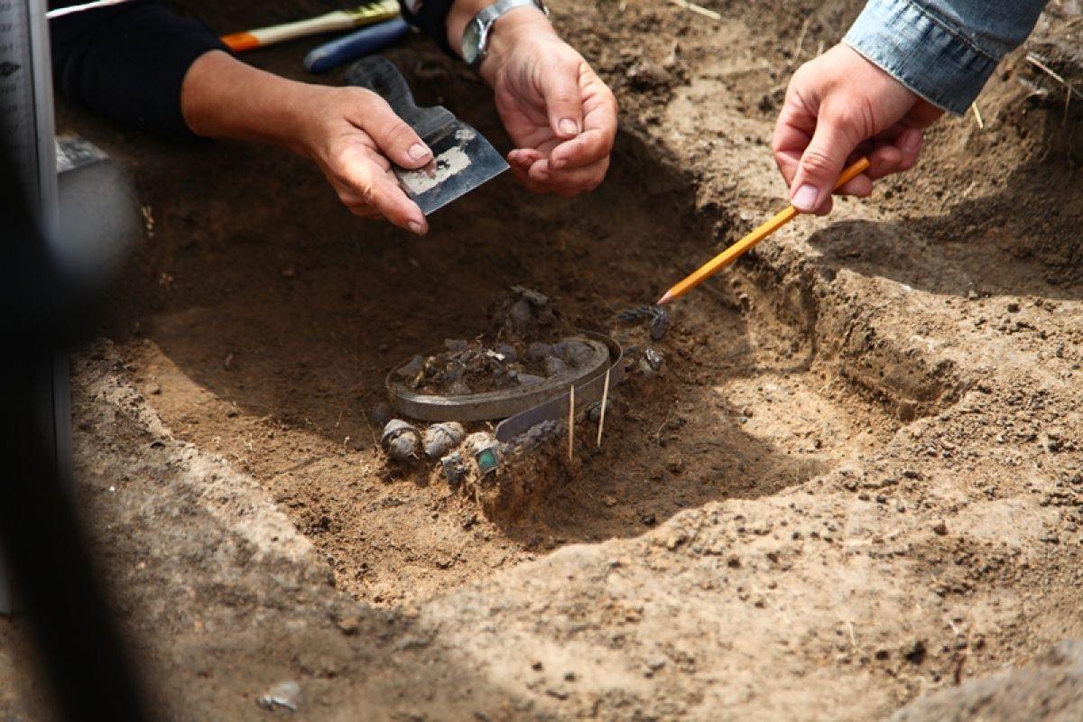 Найденный на старой рязани клад покажут 13 апреля.